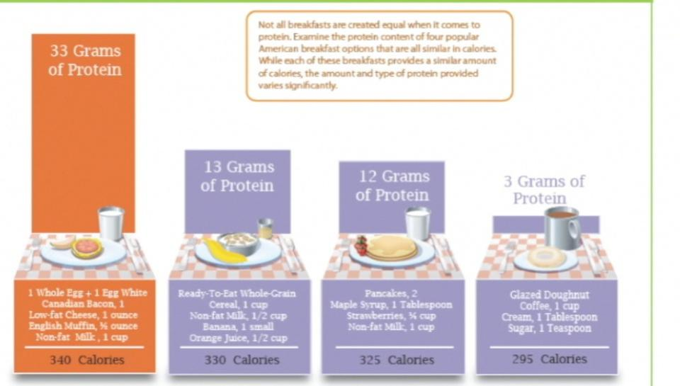 New Research on Protein, Metabolism, Recovery and Satiety